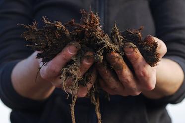 堆肥の引き取り再開について(平山農場)