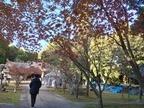 ただ今上映中!「君と100回目の恋」ロケ地の牛窓神社