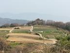 パッチワークの丘 3月の風景